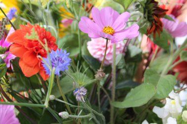 MNH bloemen
